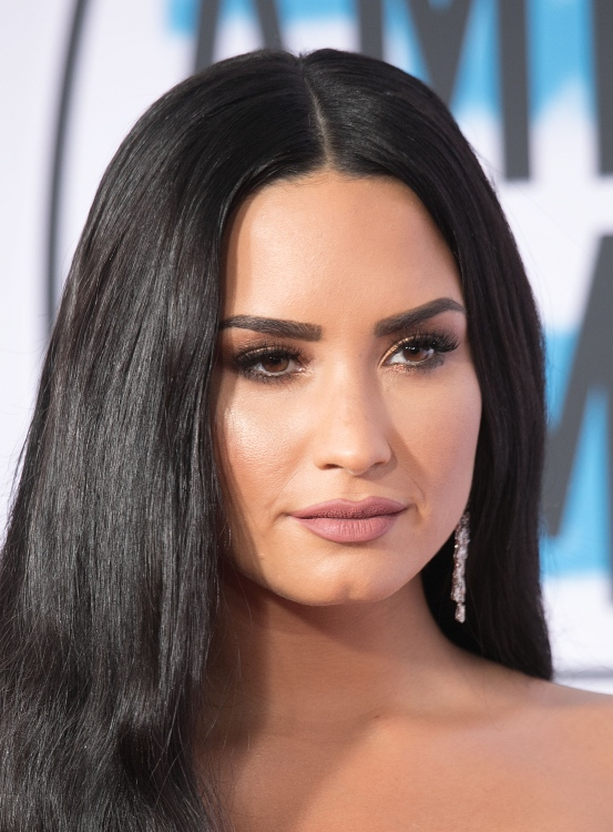 Demi Lovato on the red carpet at the American Music Awards, November 2017 / Picture Credit: Javier Rojas/Zuma Press/PA Images