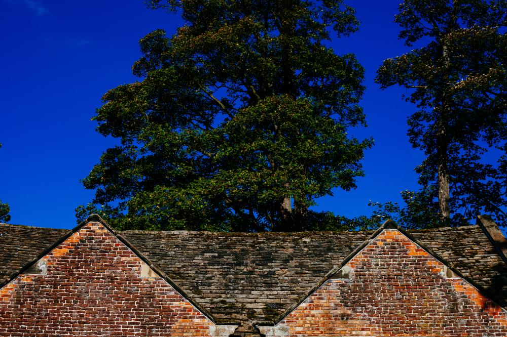 Dream Interpretation Roof