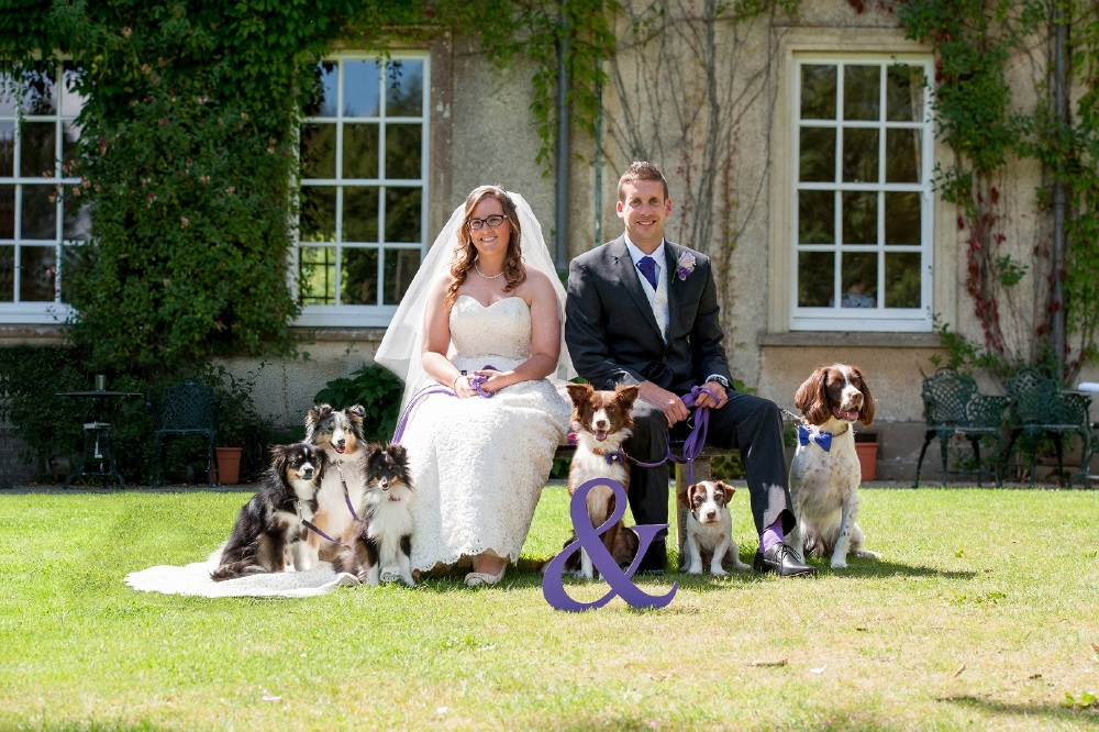 Include your pets in your wedding photos