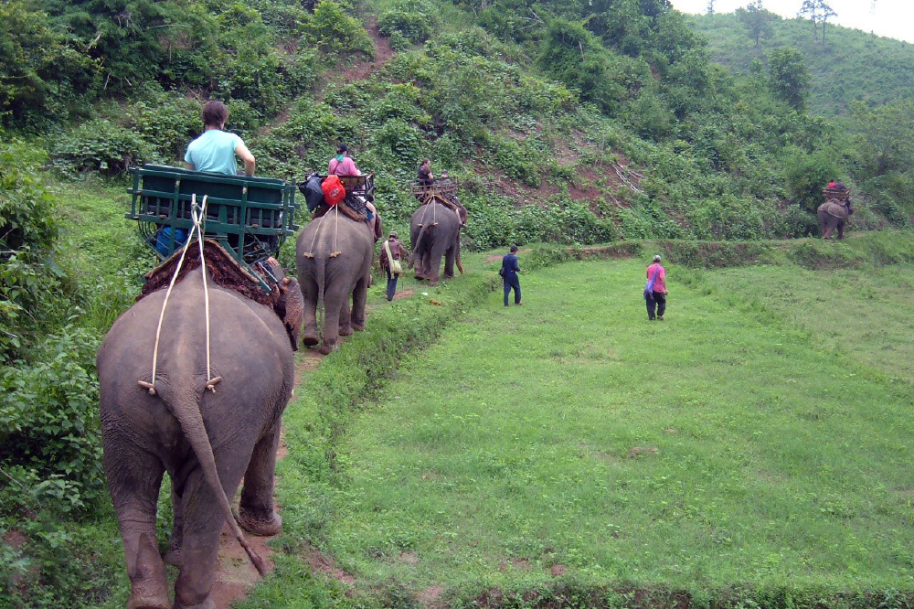 Such as elephant rides