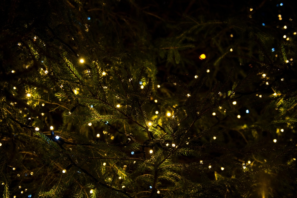 dream interpretation christmas lights