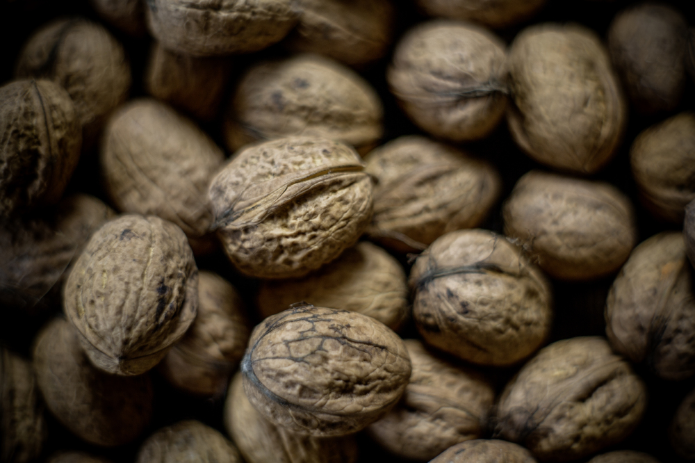 We find out what it means to dream about walnuts