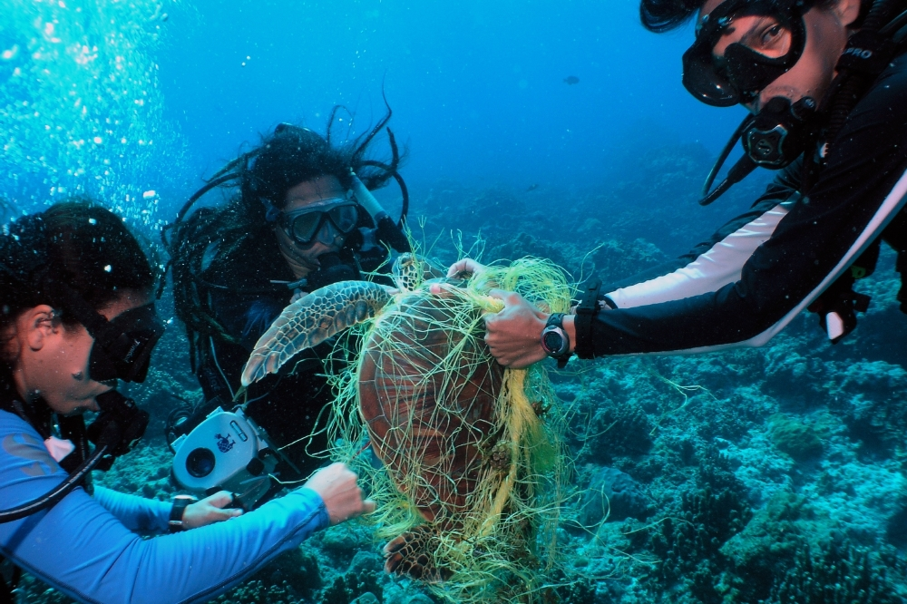 human impact of the marine enviroment While the consumption of marine species may result in serious indirect impacts on human health, marine debris that washes ashore into the marine environment.