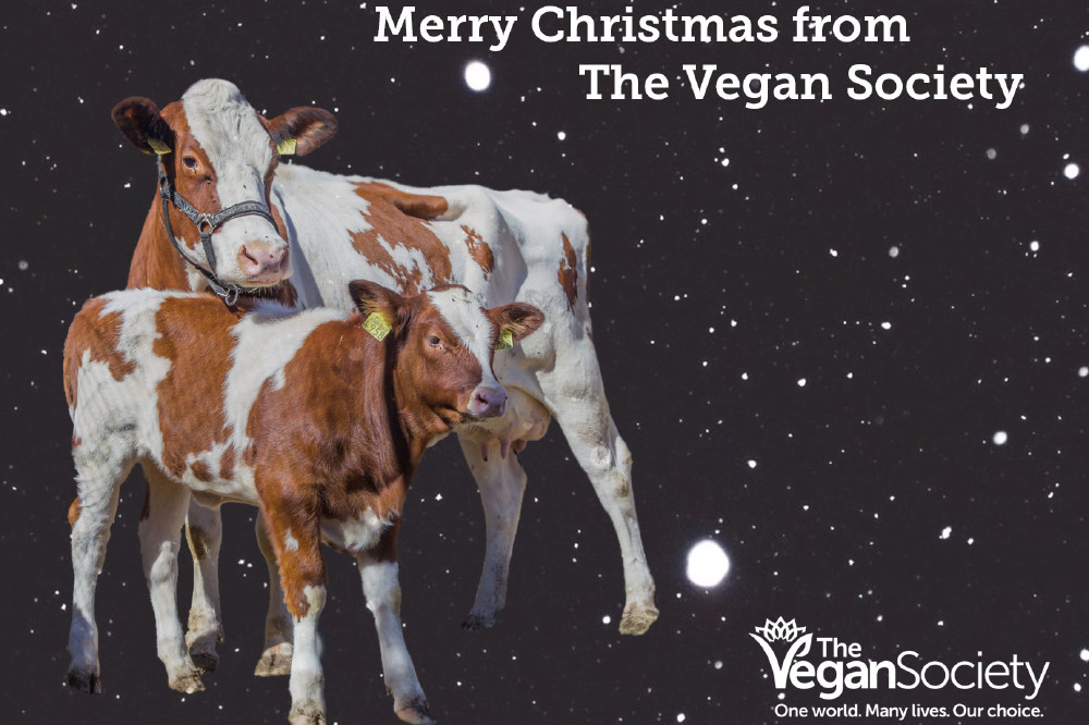 Merry Christmas from The Vegan Society