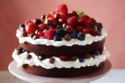 Chocolate Nibbles Summer Fruit Gateau