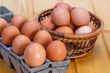 Eggs are great for nutrition value