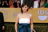 Marion Cotillard's Dior gown was a little lacklustre