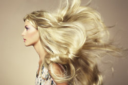 Do you need helping getting out of a hair rut?