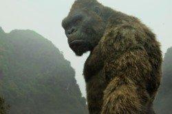 Kong: Skull Island - Is That A Monkey?