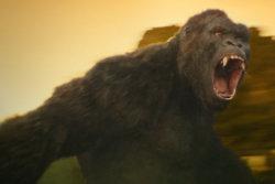 Kong: Skull Island - Magnificent