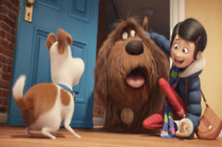 The Secret Life Of Pets Clip 4