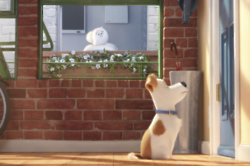 The Secret Life Of Pets Clip 3