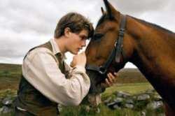 War Horse Clip 1