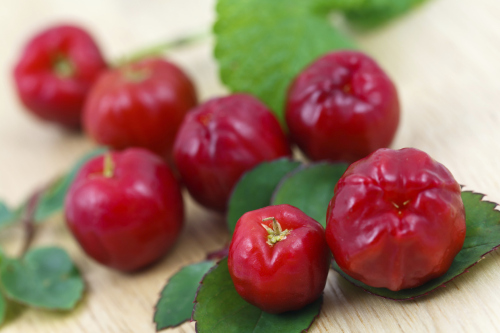 The Acerola is rich in vitamin C