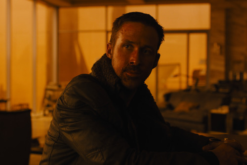Blade Runner 2049 hits cinemas in October