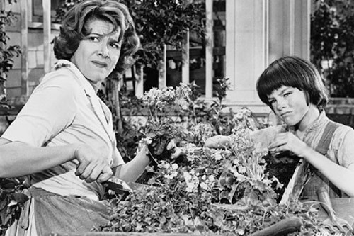 How does Aunt Alexandra display prejudice in To Kill a Mockingbird by Harper Lee?