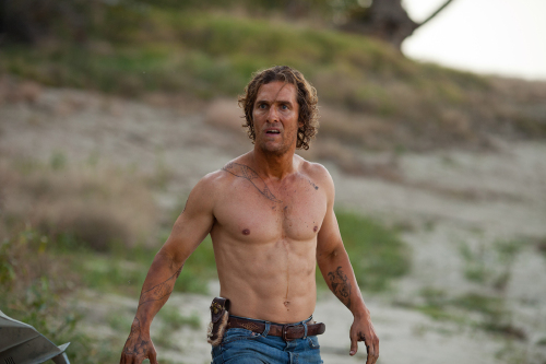 Matthew McConaughey's Career Change