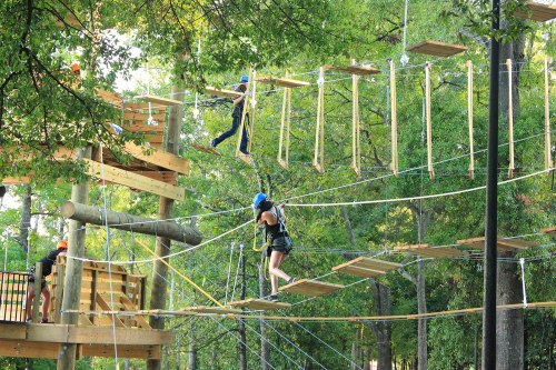 We find out what it means to dream about an obstacle course