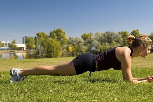 The plank performed on the forearm