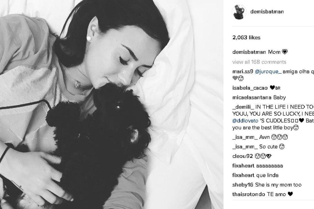 Demi Lovato Makes Instagram Account For Dog Batman