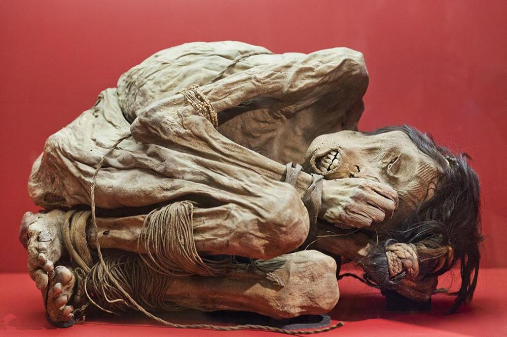 Family leg it when child breaks museum's 800-year-old casket