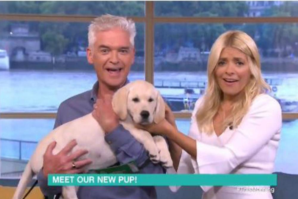 Phillip Schofield and Holly Willoughby with their new puppy (c) Twitter