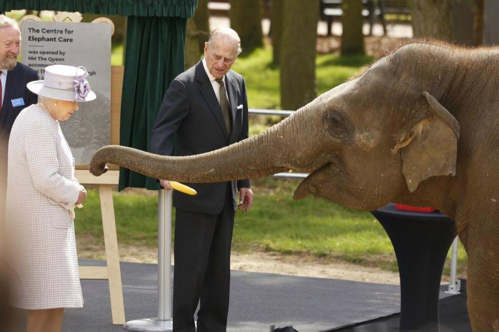 Queen Elizabeth and Prince Philip feed an elephant