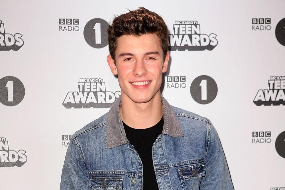 01800d17a5 Shawn Mendes was too nervous to meet royals
