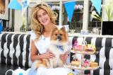 Cheska Hull launches the Blue Cross Tea Party with a little help from her pet dog, Evie www.bluecross.org.uk/teaparty