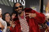 Snoop Lion at the MTV Movie Awards