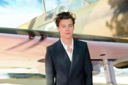 Harry Styles cried when he first watched Dunkirk
