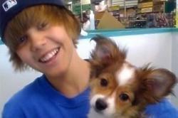 Justin Bieber Mourning Death of Dog