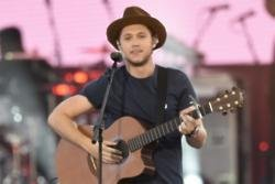 Niall Horan is banned from having house parties