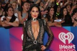Nikki Bella is 'bad' at wedding planning