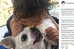 Selma Blair's 'heart is broken' after the death of her dog