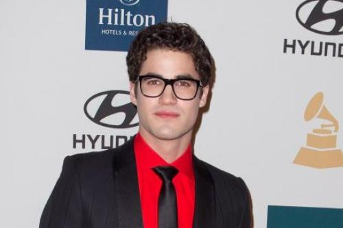 Darren Criss won't play anymore gay characters