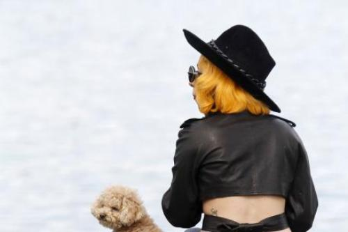Lady Gaga's Boyfriend Will Cook Her Dogs a Valentine's Day Meal