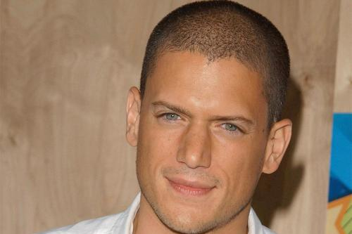 Wentworth Miller Is He Gay 53