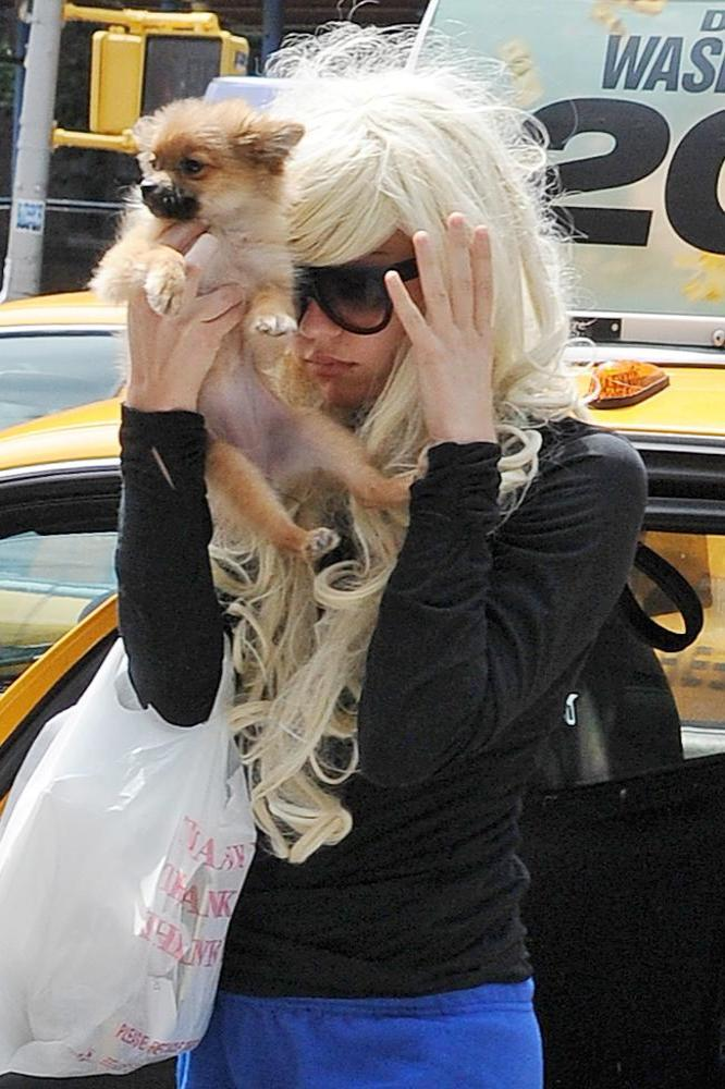 amanda bynes and schizophrenia This situation is getting very troublesome we heard yesterday from amanda bynes' lawyer, tamar arminak, that the actress was never suffering from schizophrenia despite the rumors that had come out during the hospitalization however, it was hard to believe some sort of mental health issue wasn't.