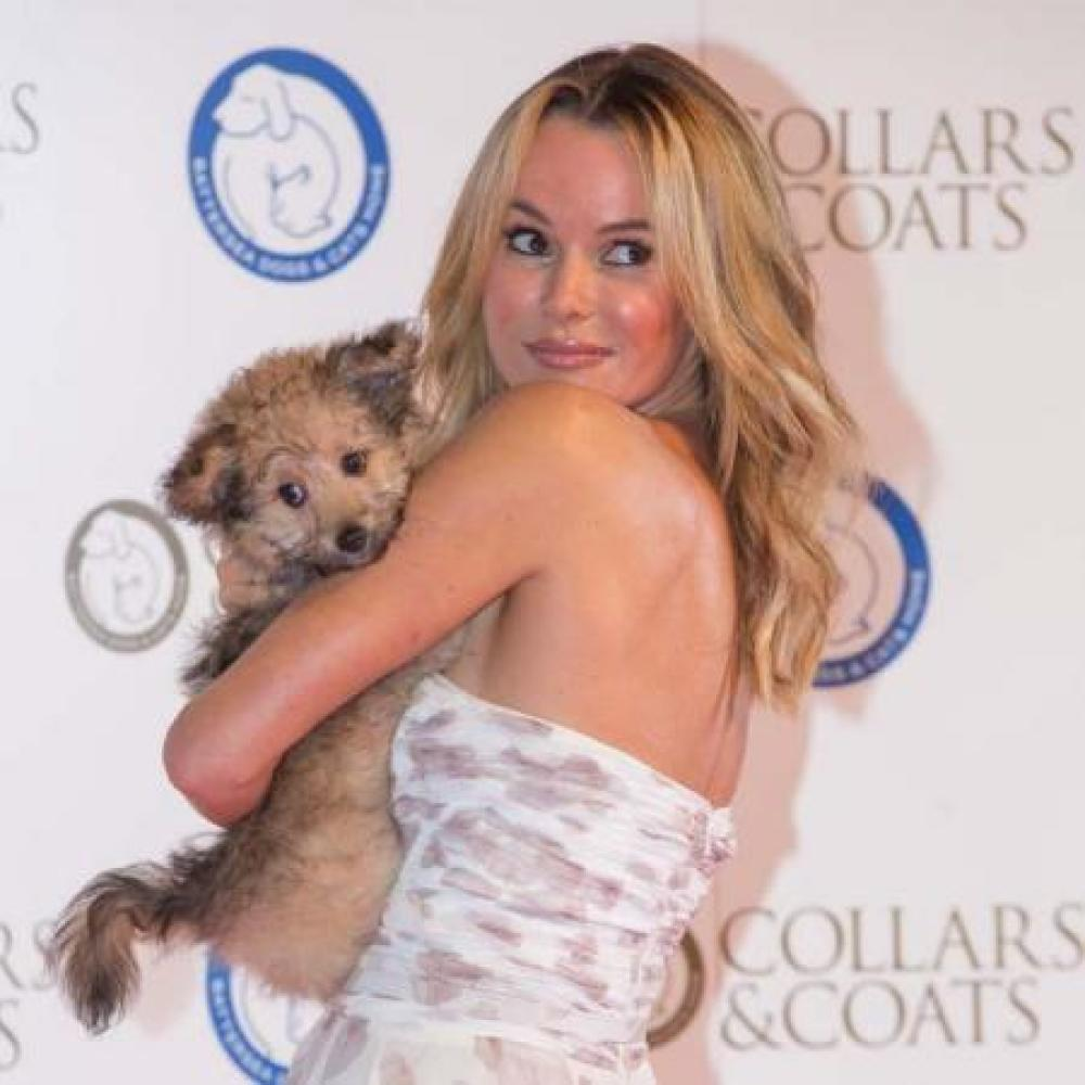 Amanda Holden at the Collars and Coats Gala Ball