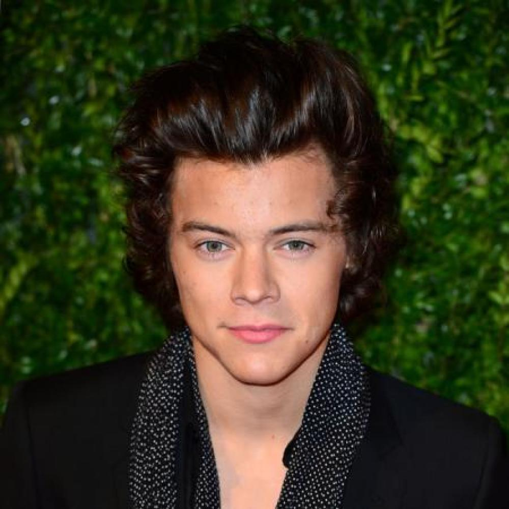 Harry Styles at the 2013 British Fashion Awards