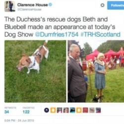 Bluebell and Camilla, Duchess of Cornwall