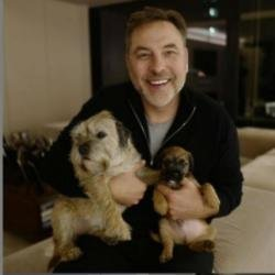 David Walliams and his dogs (c) Instagram