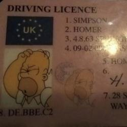 Homer Simpson driving licence (c) Twitter