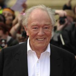 Sir Michael Gambon, who played Dumbledore