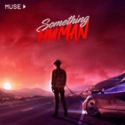 Muse Something Human artwork