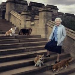 The Queen famously loves corgis