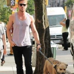 Ryan Gosling pays tribute to dog