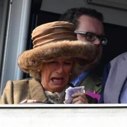 The Duchess of Cornwall at the races