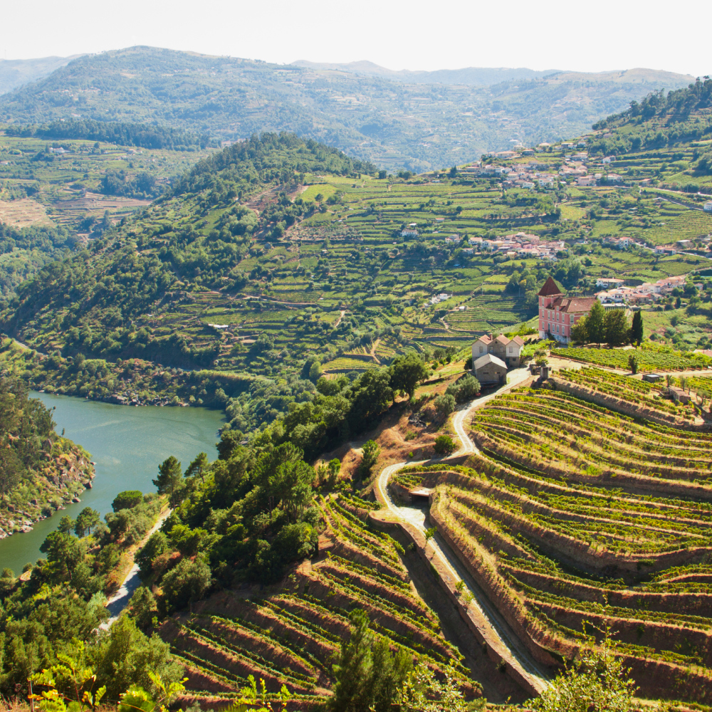 Portugal's Douro Valley (iStock/PA)